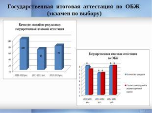 Государственная итоговая аттестация по ОБЖ (экзамен по выбору)