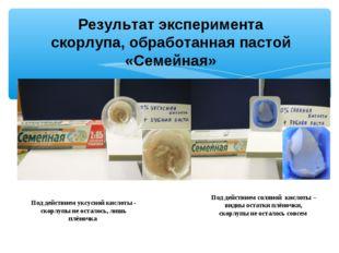 Результат эксперимента скорлупа, обработанная пастой «Семейная» Под действием