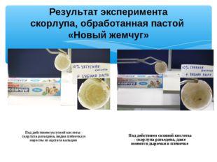 Результат эксперимента скорлупа, обработанная пастой «Новый жемчуг» Под дейст