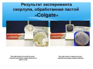 Результат эксперимента скорлупа, обработанная пастой «Colgate» Под действием