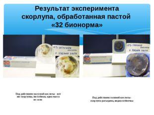 Результат эксперимента скорлупа, обработанная пастой «32 бионорма» Под действ