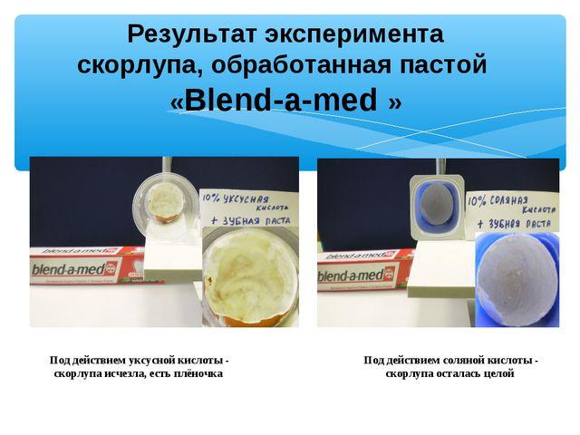 Результат эксперимента скорлупа, обработанная пастой «Blend-a-med » Под дейст...