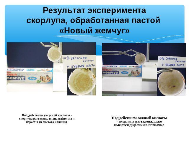 Результат эксперимента скорлупа, обработанная пастой «Новый жемчуг» Под дейст...