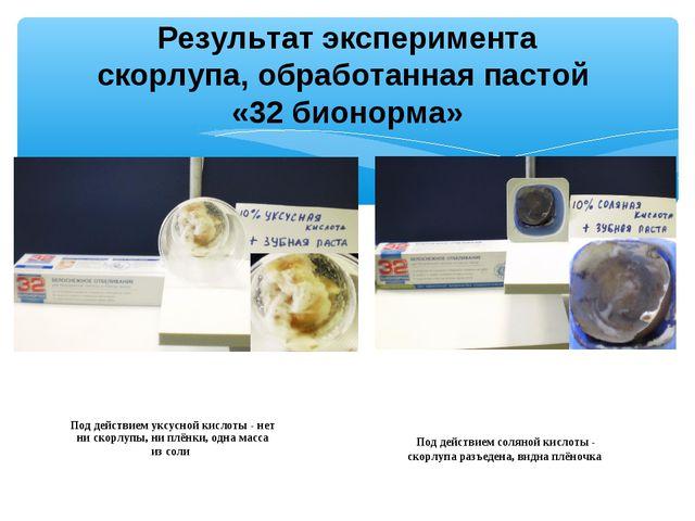 Результат эксперимента скорлупа, обработанная пастой «32 бионорма» Под действ...