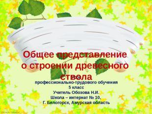 Урок профессионально-трудового обучения 5 класс Учитель Обозова Н.И. Школа –