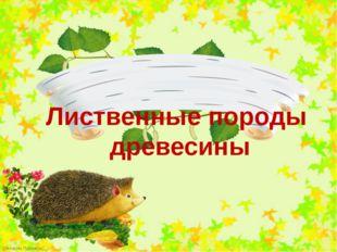 Лиственные породы древесины FokinaLida.75@mail.ru