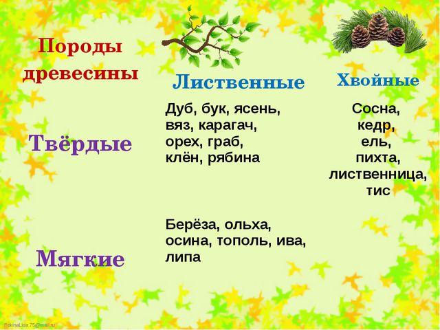 Породыдревесины Лиственные Хвойные Твёрдые Дуб,бук, ясень, вяз, карагач, оре...