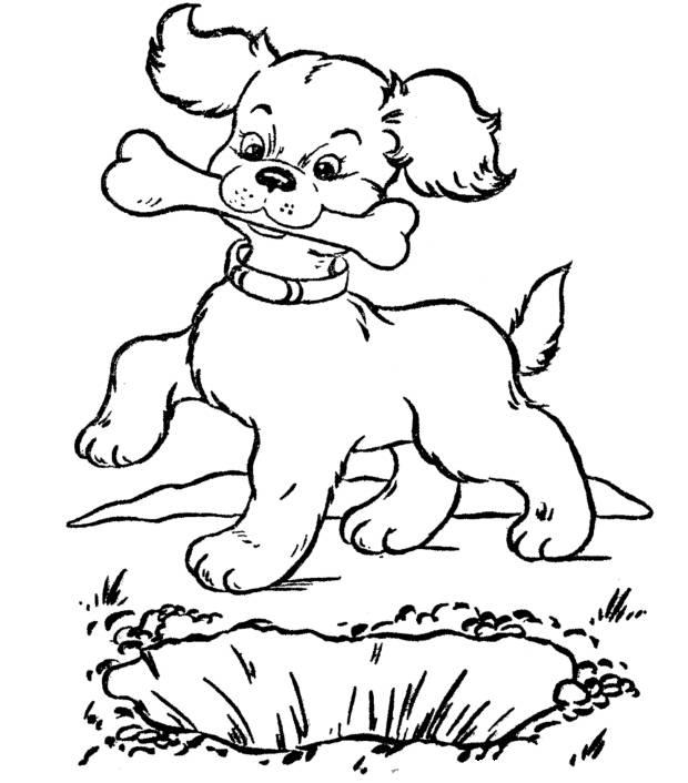 Раскраска Собака с косточкой Раскраски Собаки и щенки
