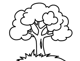 Раскраска Дерево Раскраски для малышей. . Простые раскраски.Дитячі розфарбовки размалевки розмальовки для дітей