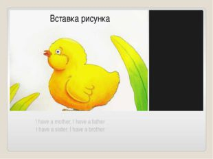 I have a mother, I have a father I have a sister, I have a brother