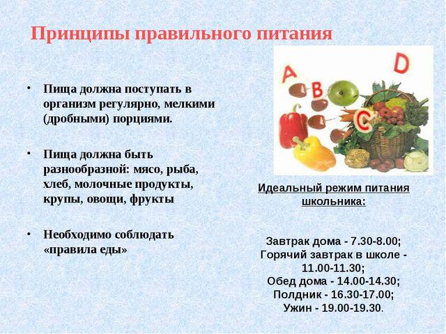 Принципы правильного питания Пища должна поступать в организм регулярно, мелк...