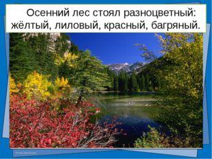 Тема урока: Имя прилагательное. Цель урока: © Фокина Лидия Петровна