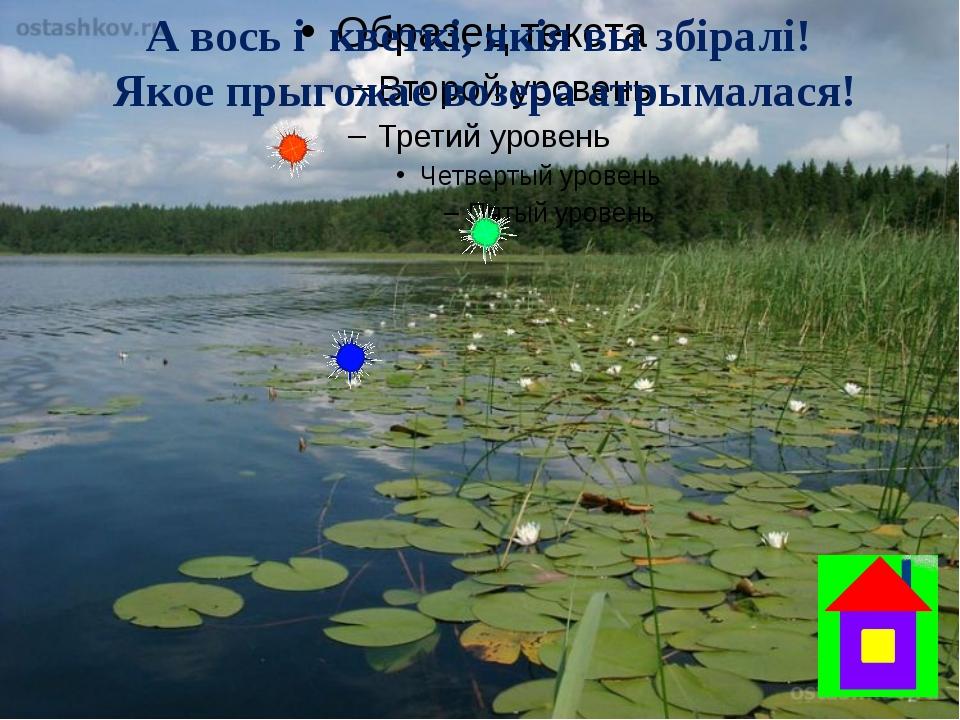 А вось і  кветкі, якія вы збіралі!  Якое прыгожае возера атрымалася!