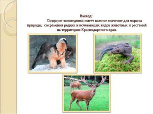 Вывод: Создание заповедника имеет важное значение для охраны природы, сохран