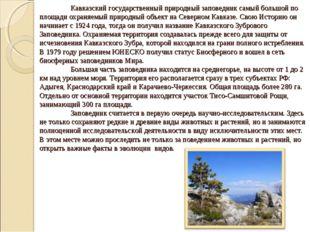 Кавказский государственный природный заповедник самый большой по площади охр