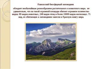 Кавказский биосферный заповедник обладает необычайным разнообразием растител