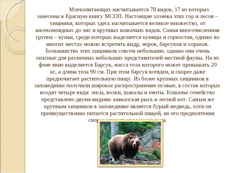 Млекопитающих насчитывается 78 видов, 17 из которых занесены в Красную книг...