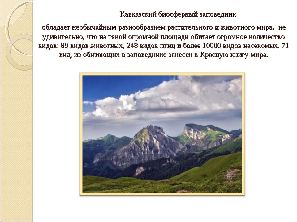 Кавказский биосферный заповедник обладает необычайным разнообразием растител...