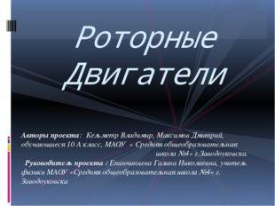 Авторы проекта: Кельметр Владимир, Максимов Дмитрий, обучающиеся 10 А класс,