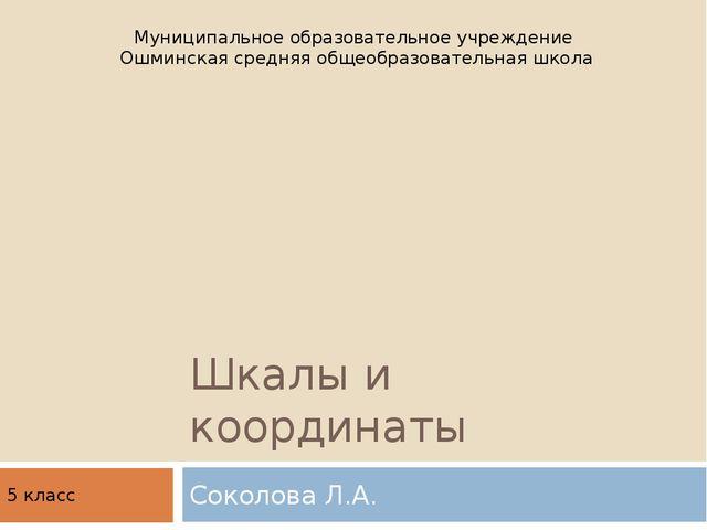Шкалы и координаты Соколова Л.А. Муниципальное образовательное учреждение Ошм...