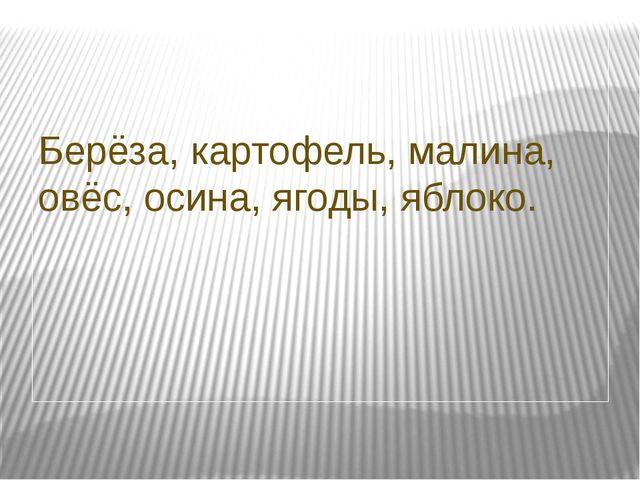 Берёза, картофель, малина, овёс, осина, ягоды, яблоко.