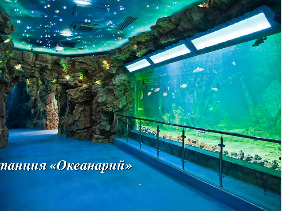 Станция «Океанарий»