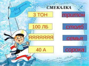 СМЕКАЛКА 3 ТОН тритон 100 ЛБ ЯЯЯЯЯЯЯ 40 А столб семья сорока