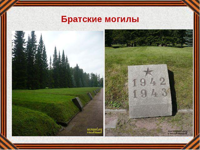 Братские могилы