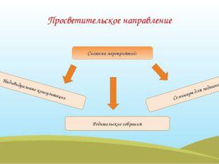 Система мероприятий: Просветительское направление Индивидуальные консультации