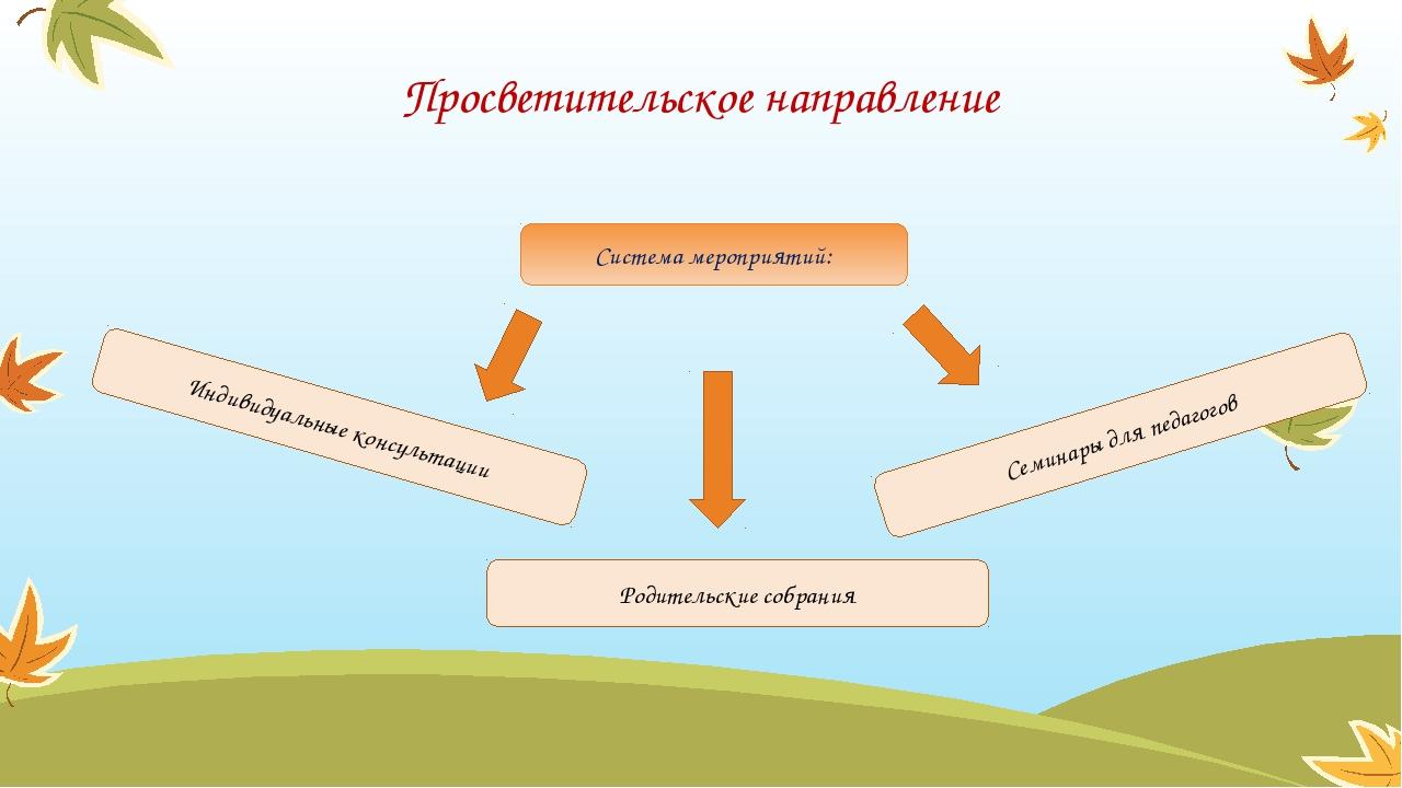 Система мероприятий: Просветительское направление Индивидуальные консультации...