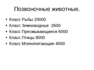 Позвоночные животные. Класс Рыбы 20000 Класс Земноводные 2600 Класс Пресмыкаю