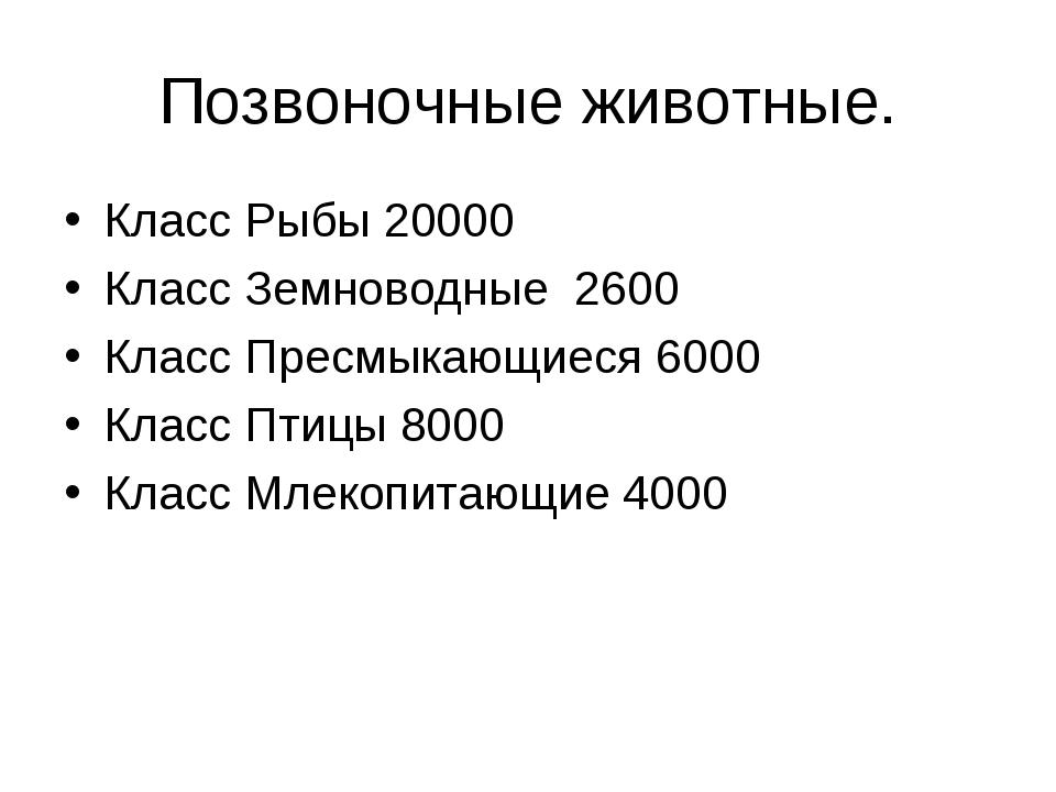 Позвоночные животные. Класс Рыбы 20000 Класс Земноводные 2600 Класс Пресмыкаю...