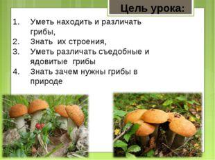 Уметь находить и различать грибы, Знать их строения, Уметь различать съедобны