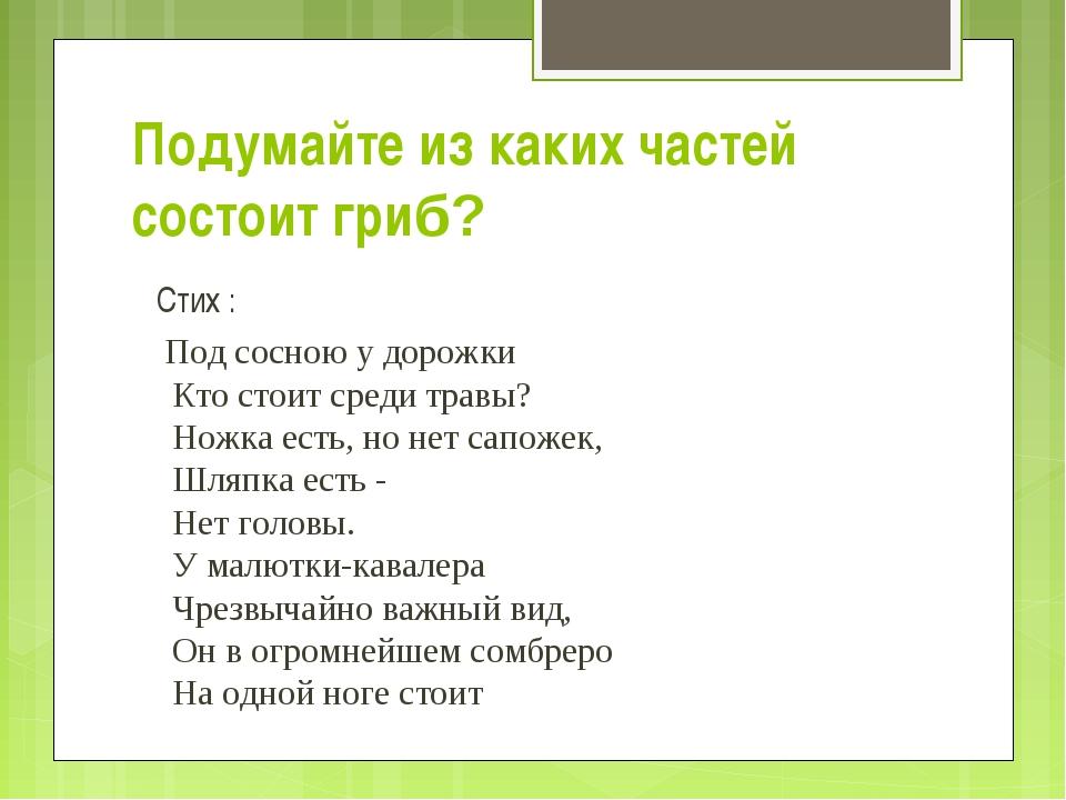 Подумайте из каких частей состоит гриб? Стих : Под сосною у дорожки Кто стои...