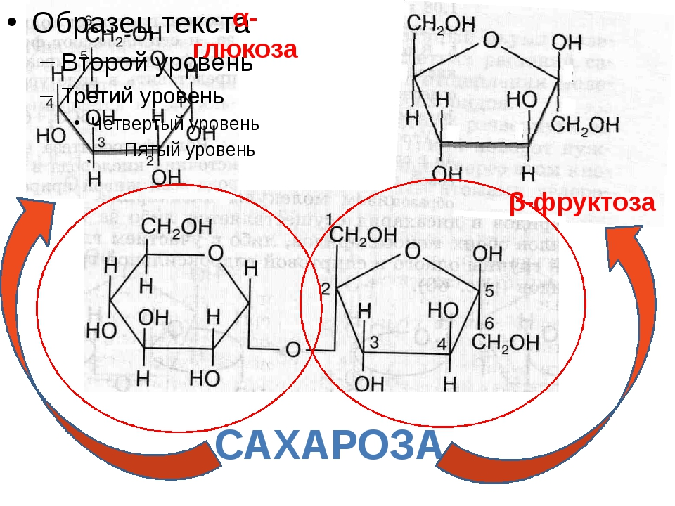 САХАРОЗА α-глюкоза β-фруктоза