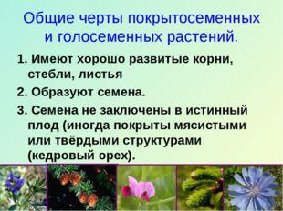 Общие черты покрытосеменных и голосеменных растений. 1. Имеют хорошо развитые