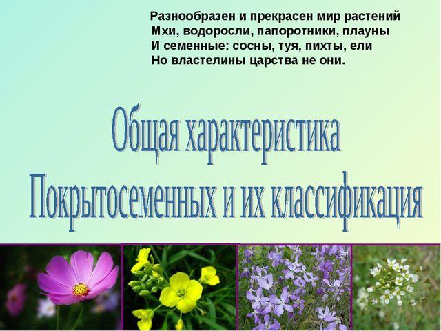 Разнообразен и прекрасен мир растений Мхи, водоросли, папоротники, плауны И...