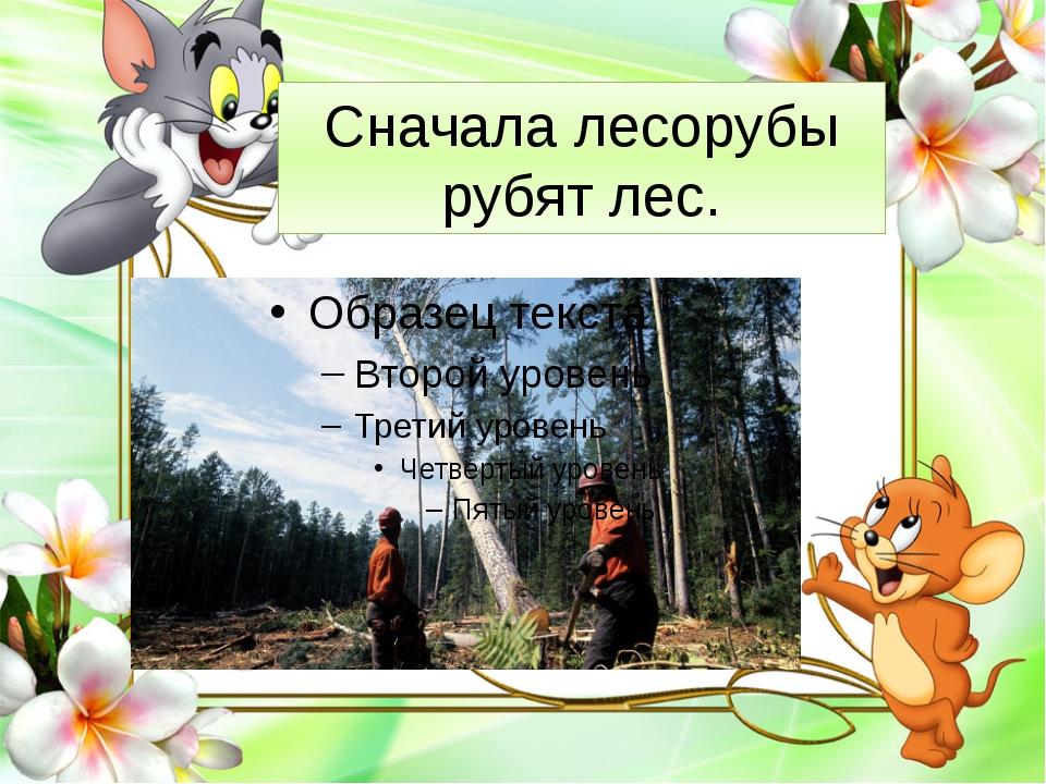 Сначала лесорубы рубят лес.