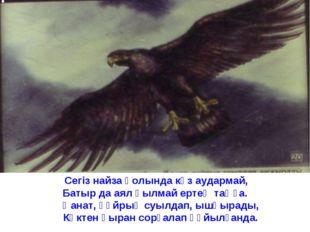 Сегіз найза қолында көз аудармай, Батыр да аял қылмай ертең таңға. Қанат, құ