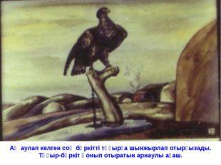 Аң аулап келген соң бүркітті тұғырға шынжырлап отырғызады. Тұғыр-бүркіт қонып