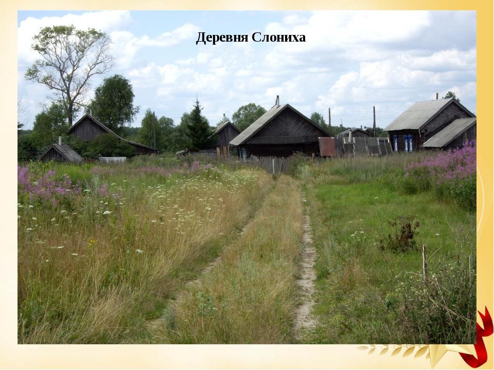 Деревня Слониха