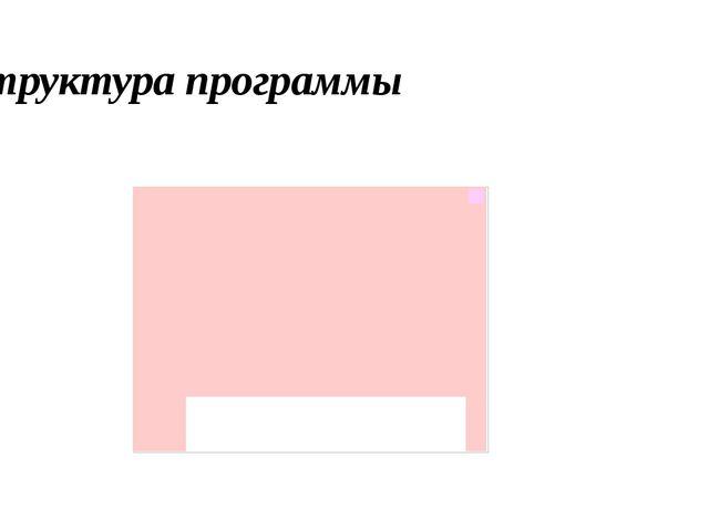 Структура программы