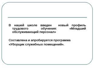 В нашей школе введен новый профиль трудового обучения: «Младший обслуживающи