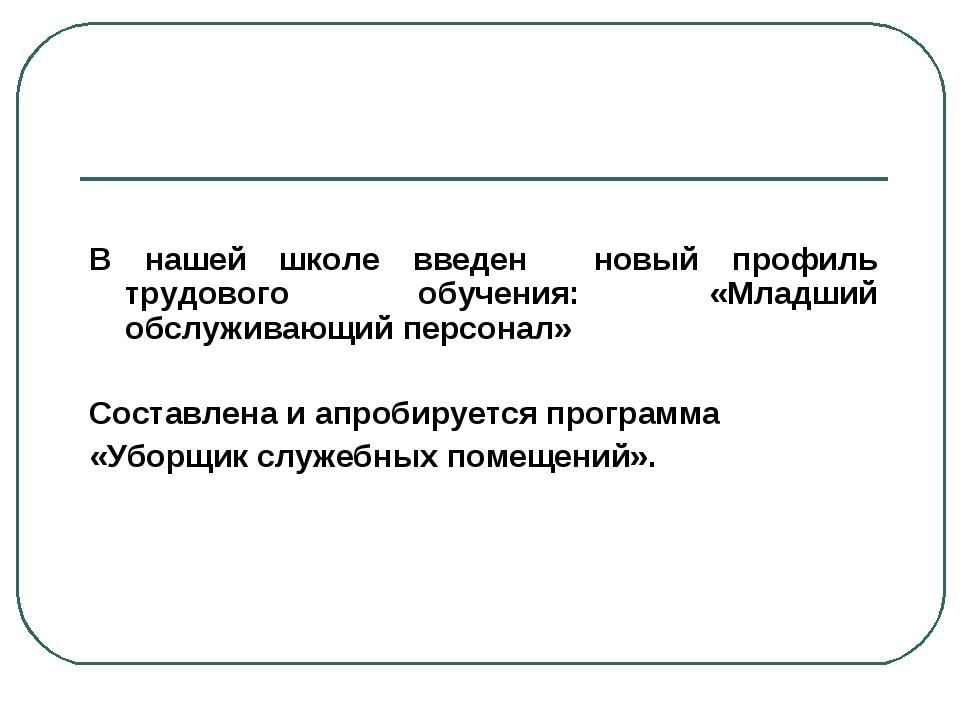 В нашей школе введен новый профиль трудового обучения: «Младший обслуживающи...
