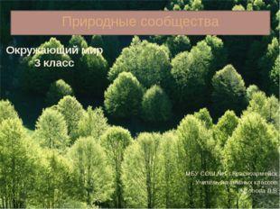 Природные сообщества МБУ СОШ №1 г.Красноармейск Учитель начальных классов Поп