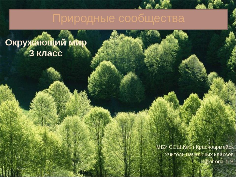 Природные сообщества МБУ СОШ №1 г.Красноармейск Учитель начальных классов Поп...