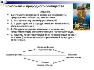 Компоненты природного сообщества Задание. 1.Вспомните и назовите основные ком