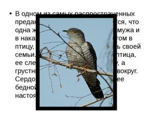 В одном из самых распространенных преданий об этой птице говорится, что одна
