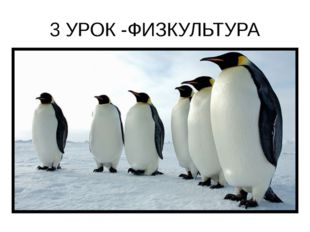 3 УРОК -ФИЗКУЛЬТУРА