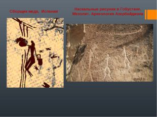 Наскальные рисунки в Гобустане. Мезолит. Археология Азербайджана Сборщик меда